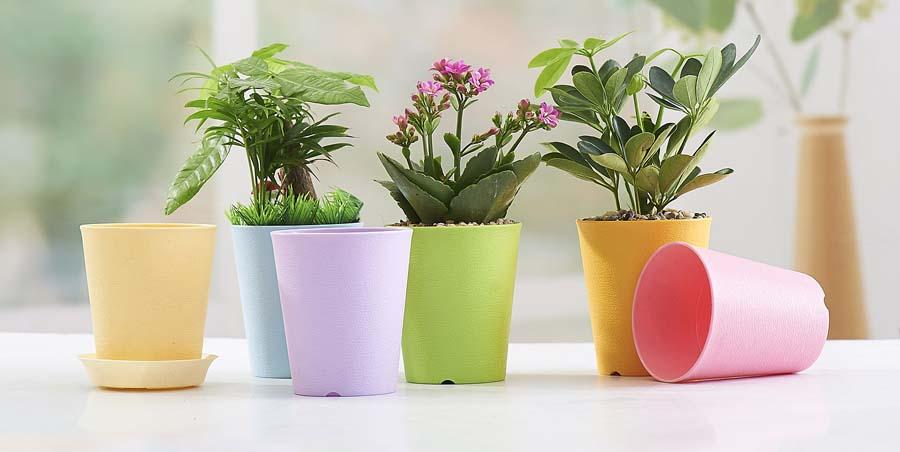 choose the right flower pot color